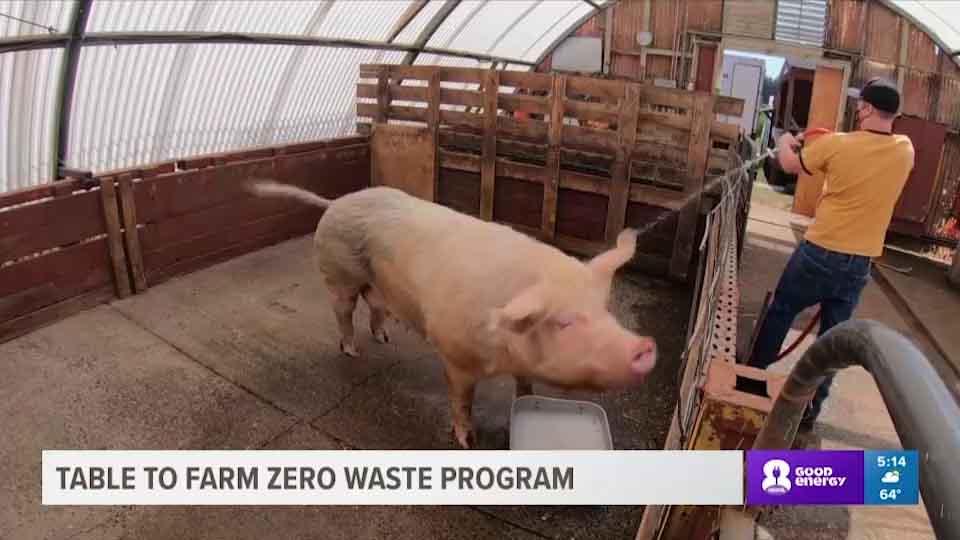 Table to farm zero waste program
